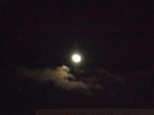 おぼろ月夜・・・ではありません。ホントは綺麗なお月様だったんですが・・・