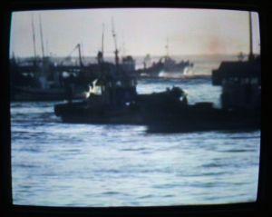 篠島の漁船群・・・